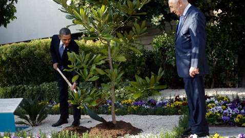 ap obama tree planting israel thg 130321 wblog Tree Obama Planted in Jerusalem May Be Uprooted for Inspection