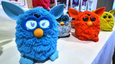 """PHOTO: Various versions of a new electronic robot toy called """"Furby"""", produced by US toy giant Hasbro and distributed by Japanese toy maker Tomy, are displayed at a press preview in Tokyo on September 4, 2012."""