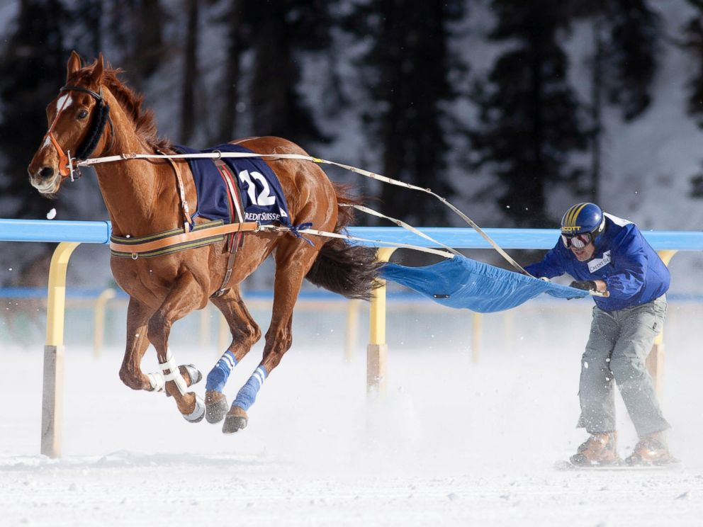 PHOTO: A ski joring racer competes in the White Turf horse racing event in St. Moritz, Feb. 3, 2013.