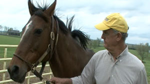 PHOTO Veteran thoroughbred owner Rick Porter says banning all drugs is the only way to rehab racings dubious image.