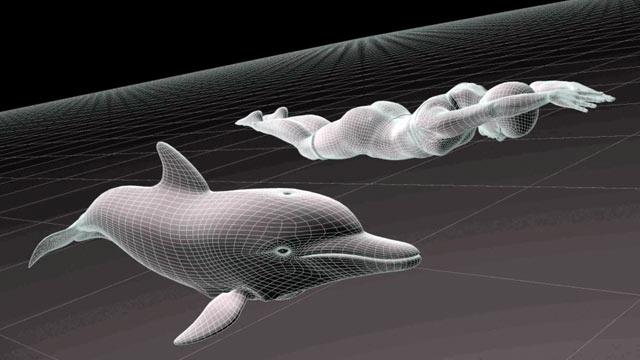 PHOTO: Motion-capture animation by Manhattan Mocap shows how Olympic swimmer Dana Vollmer moves through the water much as a dolphin does, with a very streamlined stroke. Vollmer won three gold medals at the 2012 London Olympics.