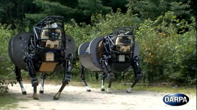 VIDEO: Field testing of robot that can carry gear and walk on rugged terrain.