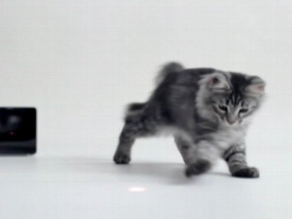 VIDEO: The new device allows users to play with and monitor their pets from a smartphone app.