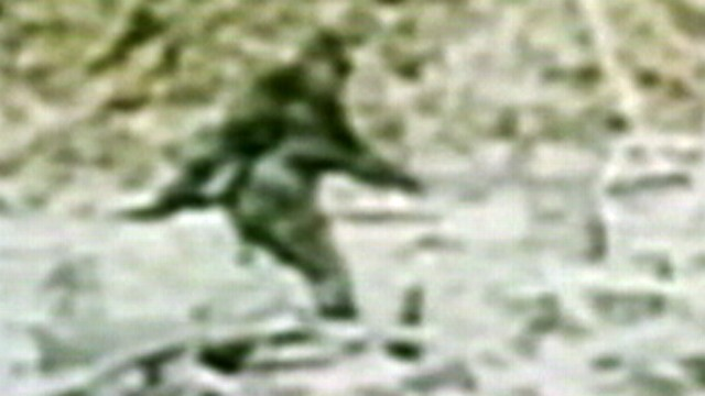 VIDEO: European researchers plan to test Bigfoot, Yeti hair samples to help crack the Bigfoot mystery.