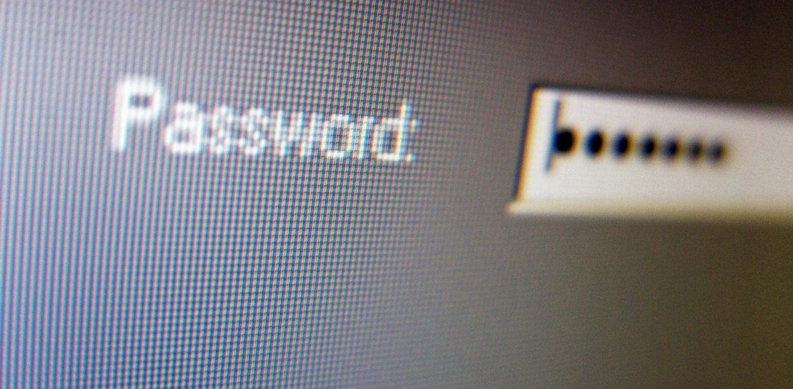 PHOTO: A password is entered on a computer screen in this undated file photo.
