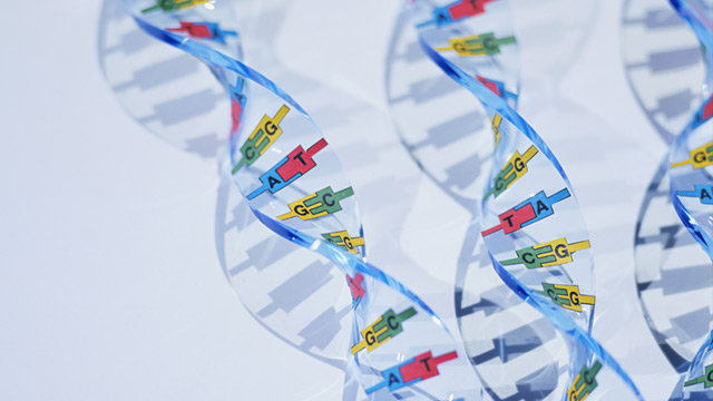 PHOTO: DNA