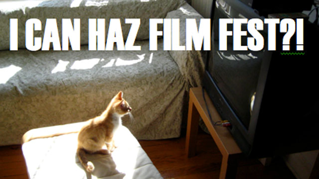 PHOTO: The Walker Art Center in Minneapolis will hold a Internet Cat Video festival on August 30, 2012.