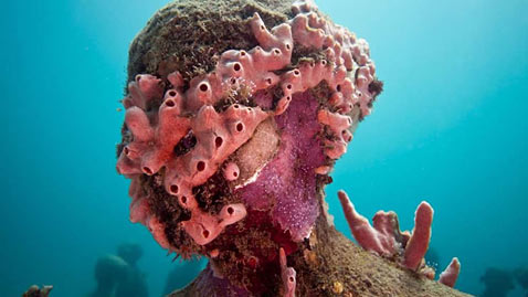 ht jason deCaires taylor 13 jp 110831 wblog Jason de Caires Taylor: Underwater Photography