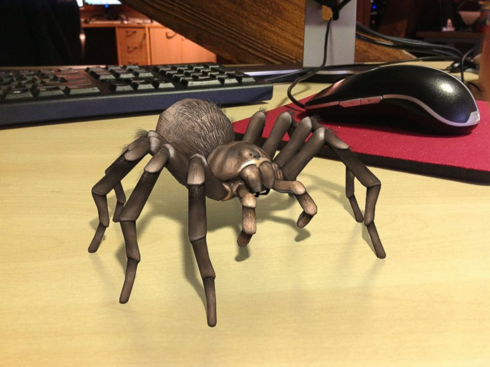 PHOTO: Eventually, youll be able to look at this tarantula photo without fear, the app makers say.