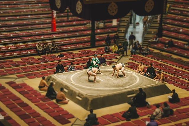 ht tokyo sumo ll 120211 wblog CityShrinker: Metropolises in Miniature