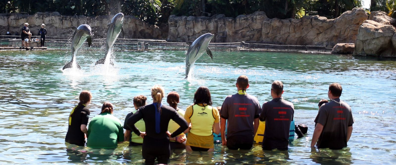 PHOTO: Dolphin's jumps at Discovery Cove, Orlando, Fla. as 192 children swim with dolphin's part of the annual Dreamflight Charity trip to the USA in this Oct. 27, 2013, file photo.
