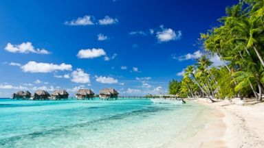 PHOTO: Travel to Tahiti for less than this years average tax refund.