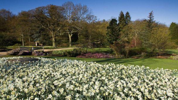 PHOTO: RHS Garden Harlow Carr, Yorkshire, U.K.