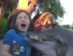 PHOTO: An 8-year-old girl was nearly dragged into the water while feeding a dolphin at Sea World.
