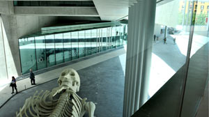 On Sunday May 30th the MAXXI gallery in Rome will open its futuristic doors to the public.