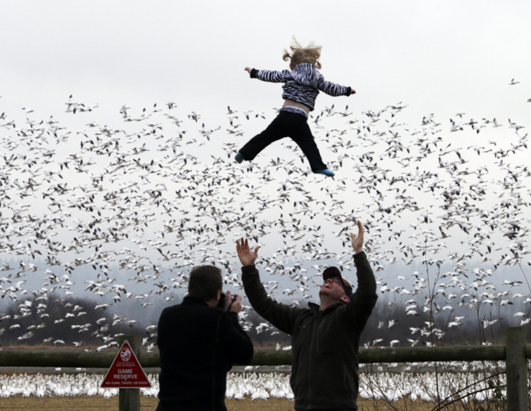 ap baby air dm 121228 Today in Pictures: Yomari Puni Festival, Snow Geese, Protests