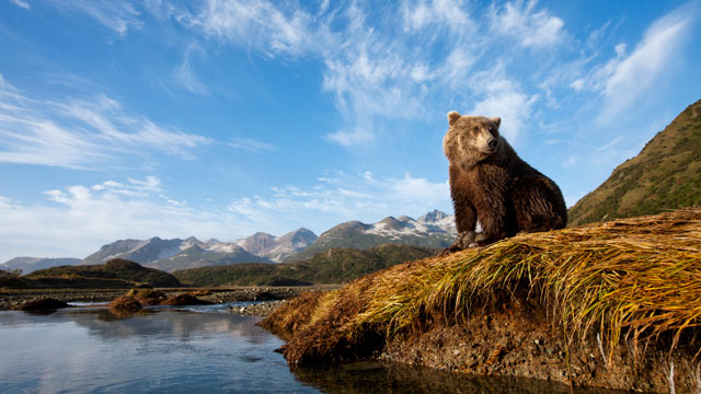 PHOTO: Here are some tips on what to see in Alaska.