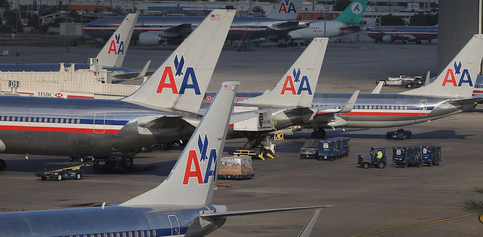 PHOTO: An American Airlines flight attendant is suing the airlines after co-workers accused her of smuggling her pet rats onto her airplane.
