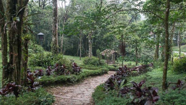 Nicaragua: Selva Negra