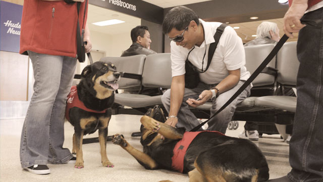PHOTO: The new PUP (Pets Unstressing Passengers) program at Los Angeles International Airport kicked off this week.