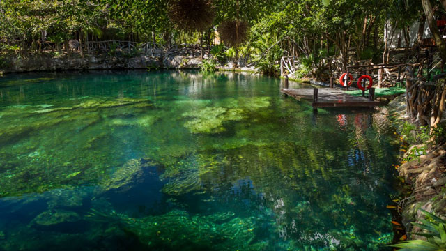 PHOTO:The underground rivers and cenotes AKA swimming holes of Mexico are an endlessly compelling attraction for visitors, and resorts lucky enough to have a cenote on-property usually build some kind of visitor experience around it. All the better if it'