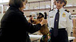 TSA Officers from Time to Time Have to Deal With the Surprising Service Monkey