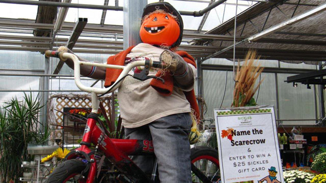 PHOTO: Sickles Market's name that scarecrow display.
