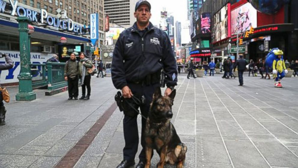 VIDEO: NYPD adopts first military dog in the force.