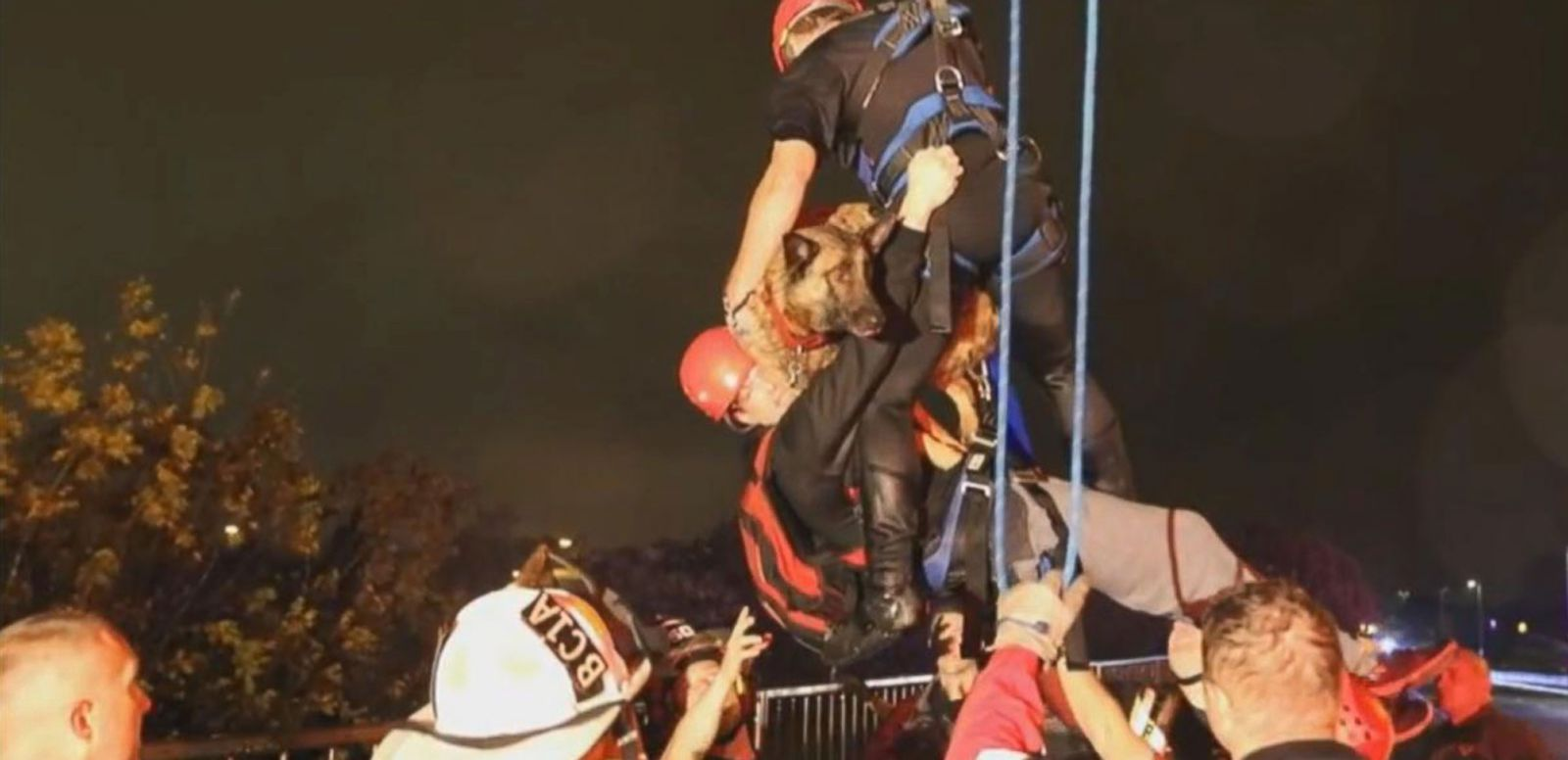 VIDEO: Man and Dog Rescued From Floodwaters in Texas
