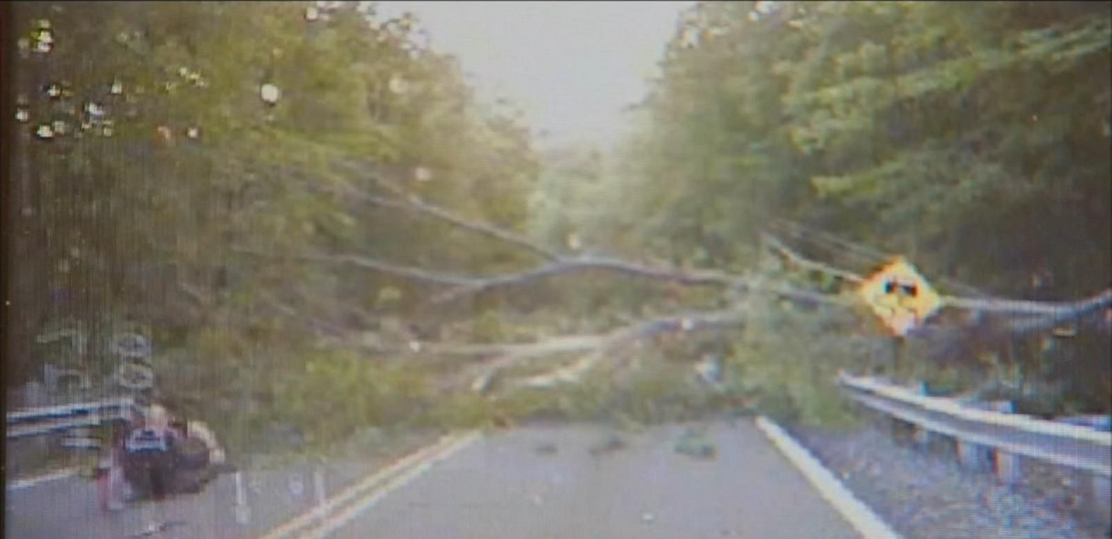 Dashcam video caught the tree falling onto the officer in Ridgewood on Friday morning.