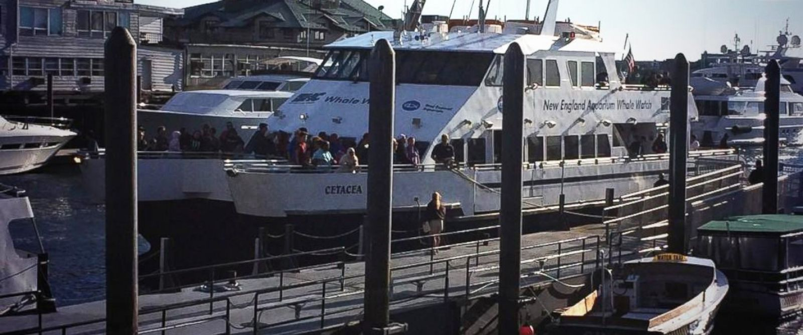 PHOTO: A whale-watching boat docks at Boston Harbor, July 29, 2014, after being stranded overnight.