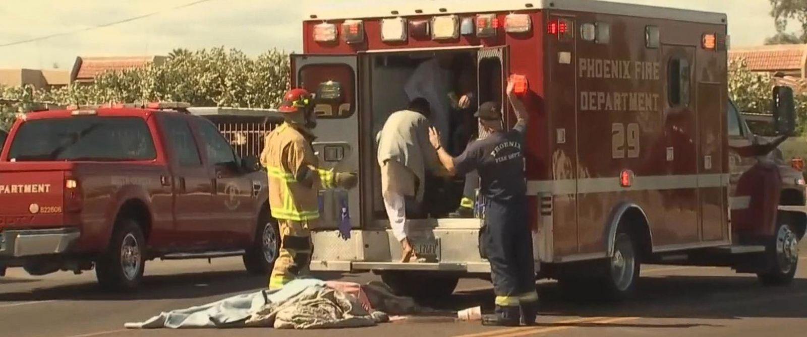 По крайней мере 20 человек пострадали от укусов пчел в мечети Аризоны
