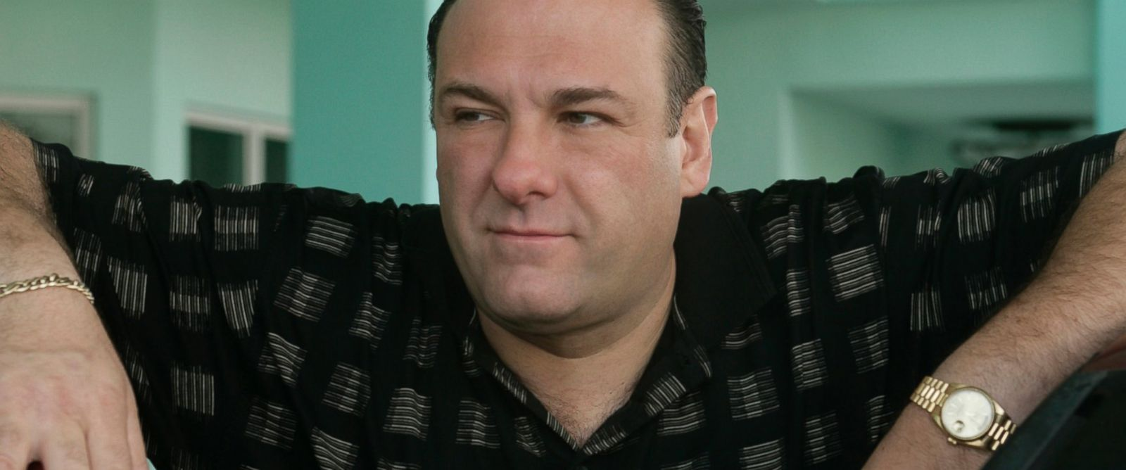 "PHOTO: James Gandolfini is pictured as Tony Soprano in the final season of ""The Sopranos."""