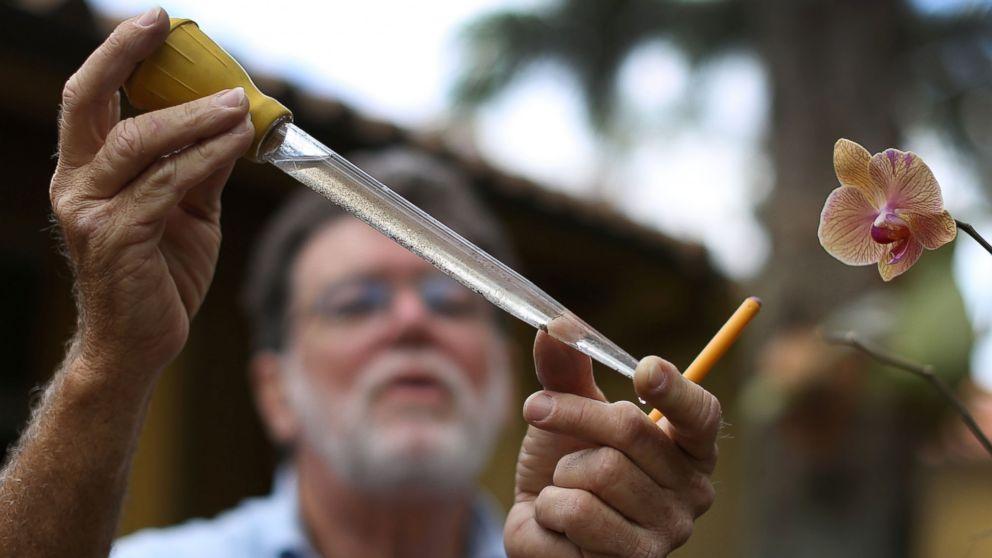 'Narrow Window' to Act on Zika Virus, CDC Chief Warns as Congress Lags on Emergency Funding - ABC News