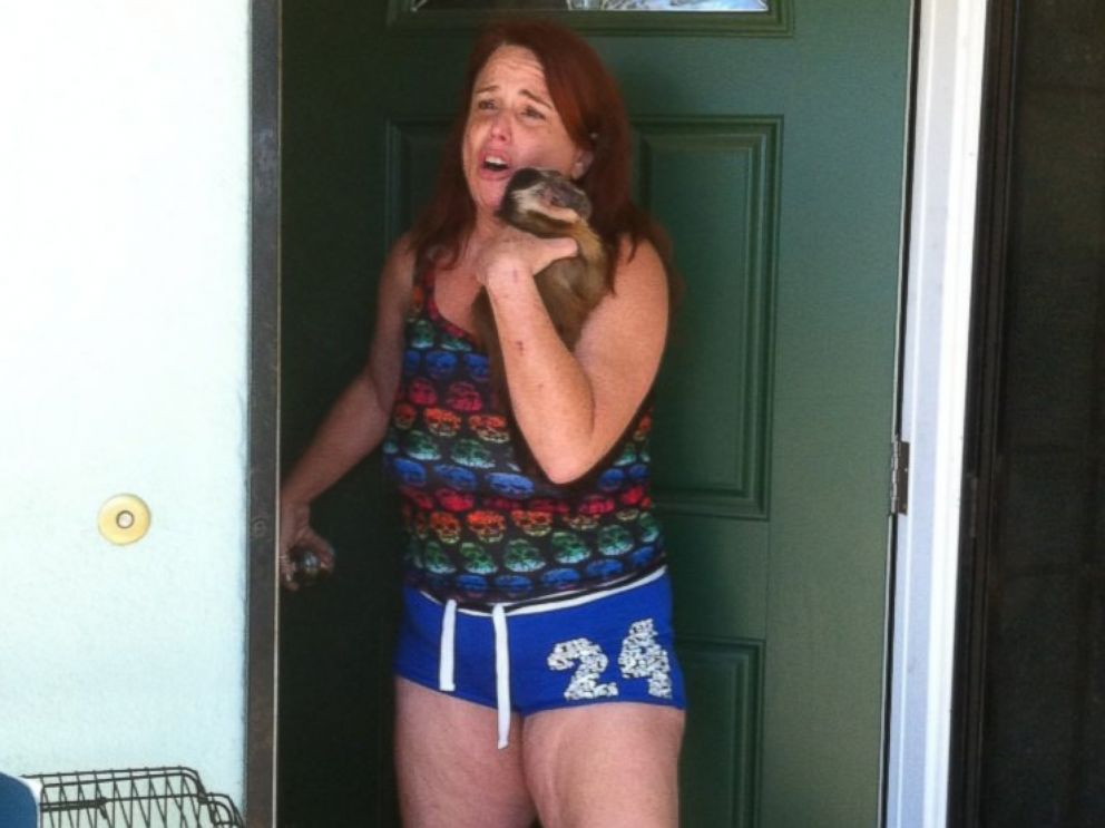 PHOTO: Wendelin Ringel had her monkeys confiscated Aug. 5, 2014, after failing to obtain proper permits.