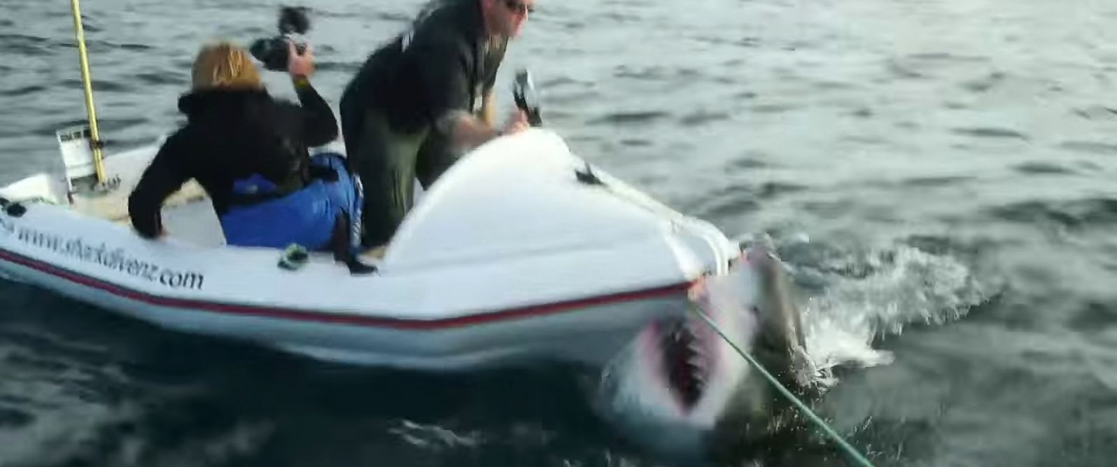 """PHOTO: A great white shark attacked a dinghy occupied by two film crew members during filming for """"Lair of the Megashark"""" in 2014."""