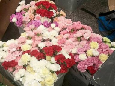 PHOTO: Hayden Godfrey spent more than $450 of his own cash to buy a carnation for every single girl at his Utah high school.