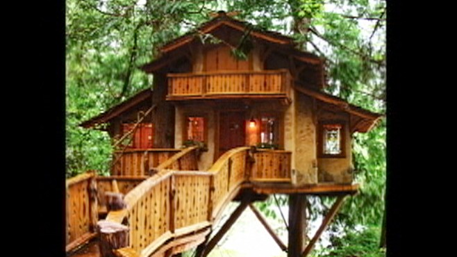 VIDEO: Explore the beautiful and magical world of grown-up treehouses.