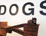 PHOTO: Art Basel Miami, the annual contemporary art exhibition held in Miami, Florida, runs from Dec. 6-9, 2012.