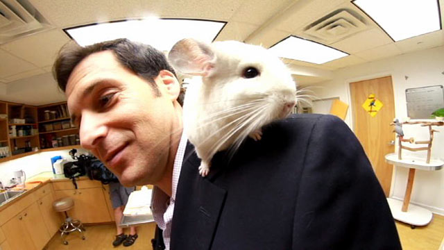 PHOTO: ABC News Correspondent John Berman with one of the animals at New Yorks Center for Avian and Exotic Medicine.