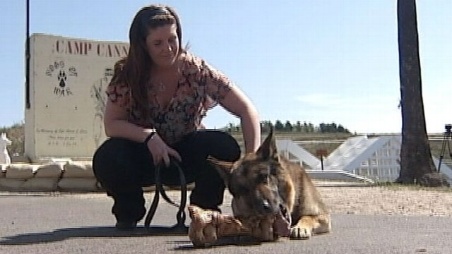 VIDEO: Sgt. Rex is reunited with handler Cpl. Megan Leavey.