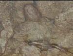 marble slab