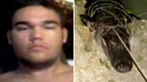 Photo: Florida Teen Loses Hand in Brutal Alligator Attack: Alligator That Attacked Tim Delano Later Captured, the Hand Still in its Stomach