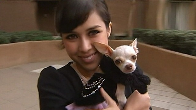 VIDEO: Arlene Corona wore bathing suit to draw attention to her lost Chihuahua.