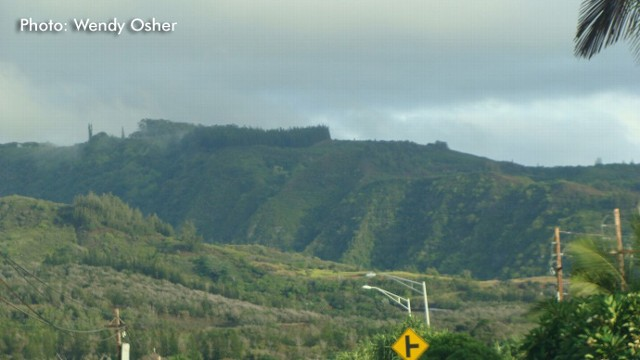 VIDEO: Tourists escaped nearly unharmed after veering off road and down a 100-foot cliff on Maui.