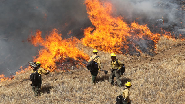 PHOTO: A U.S. Forest Service crew conduct a back burn to stop a wildfire burning, May 1, 2013, in Banning, Calif.