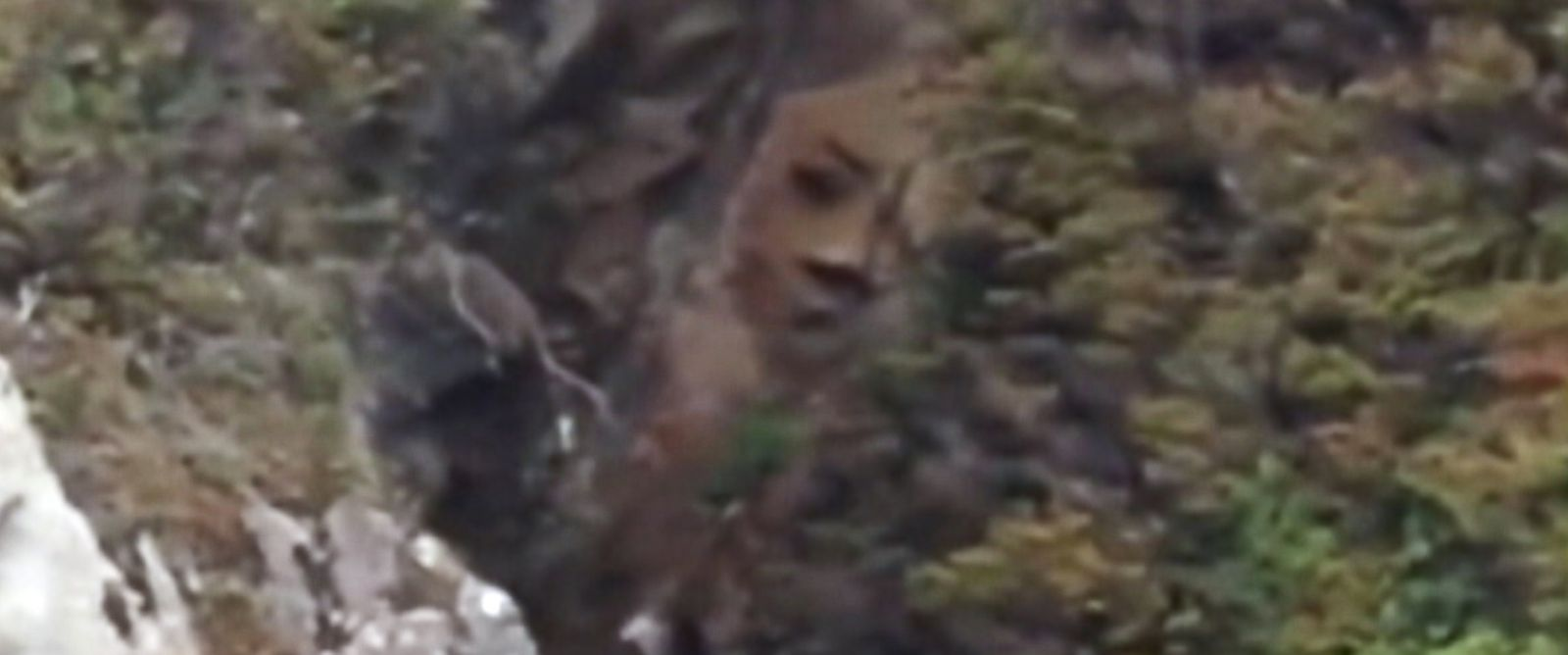 PHOTO: Canadian park officials are trying to determine the origin of a giant face that appears to be carved into a cliff side in Reeks Island, British Columbia.