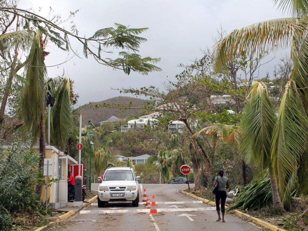 PHOTO: A woman walks past damaged trees in Orient Bay on the French Caribbean island of Saint Martin on Oct. 14, 2014.