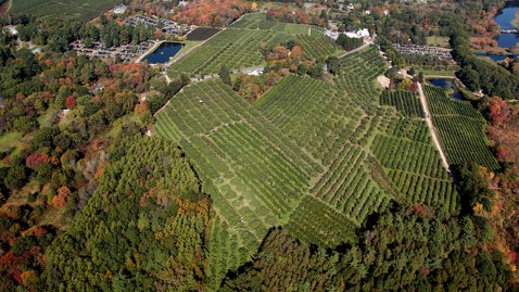 ht apple orchard lost couple thg 111028 wblog Couple Lost in Apple Orchard Calls 911