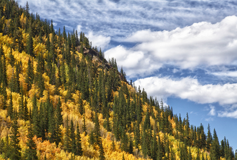 ht aspen nt 121001 blog When Autumn Comes to ...